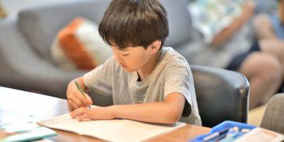 小学生のうちの子が気に入った家庭学習方法『教科書ぴったりトレーニング』-レビュー